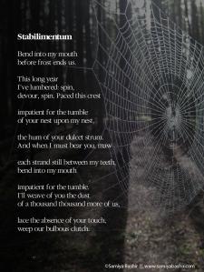 poetry-stabilimentum