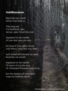 poetry-stabilimentum